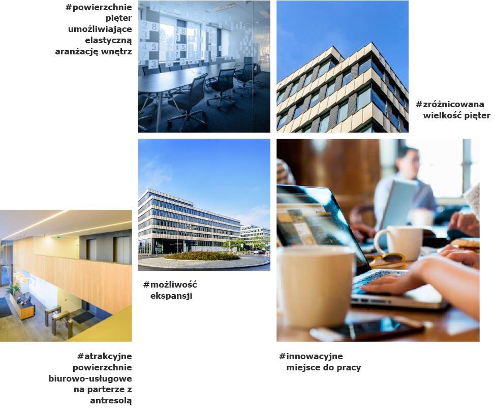 Park Rozwoju - Idealne warunki - Grafika