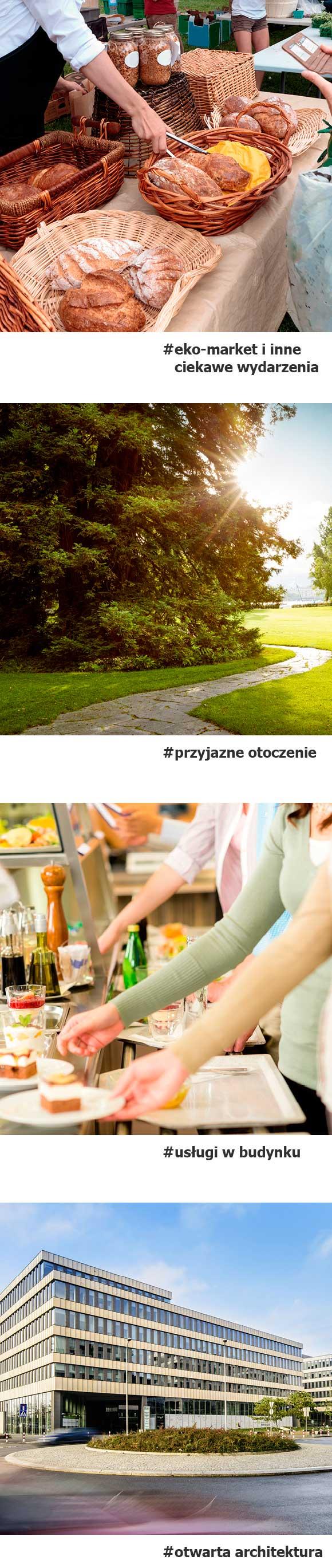 Park Rozwoju - Przyjazne miejsce - Grafika